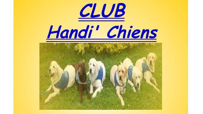 logo club handi'chiens.jpg